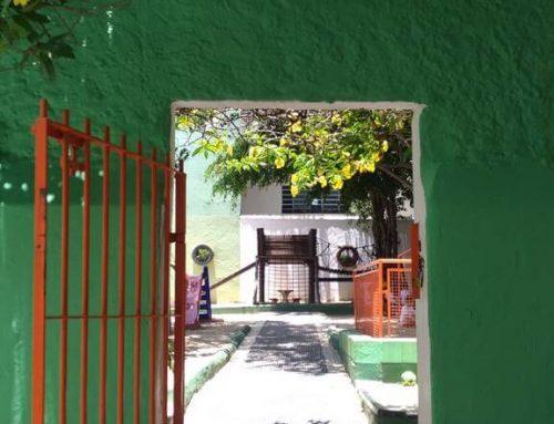 Mais do que um portão, um portal. Mais do que um parque, a morada da felicidade